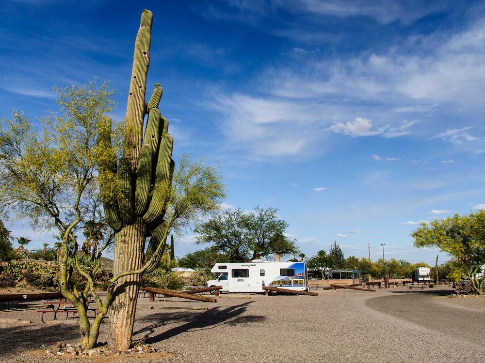 Campground am Wüstenrand