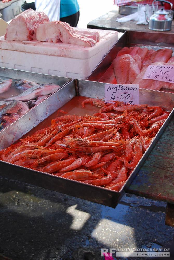 Marsaxlokk - Frische Fische