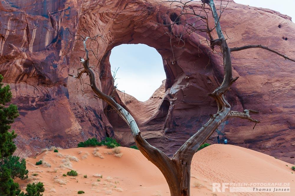 Arches (Bögen) gibt es auch im Monument Valley