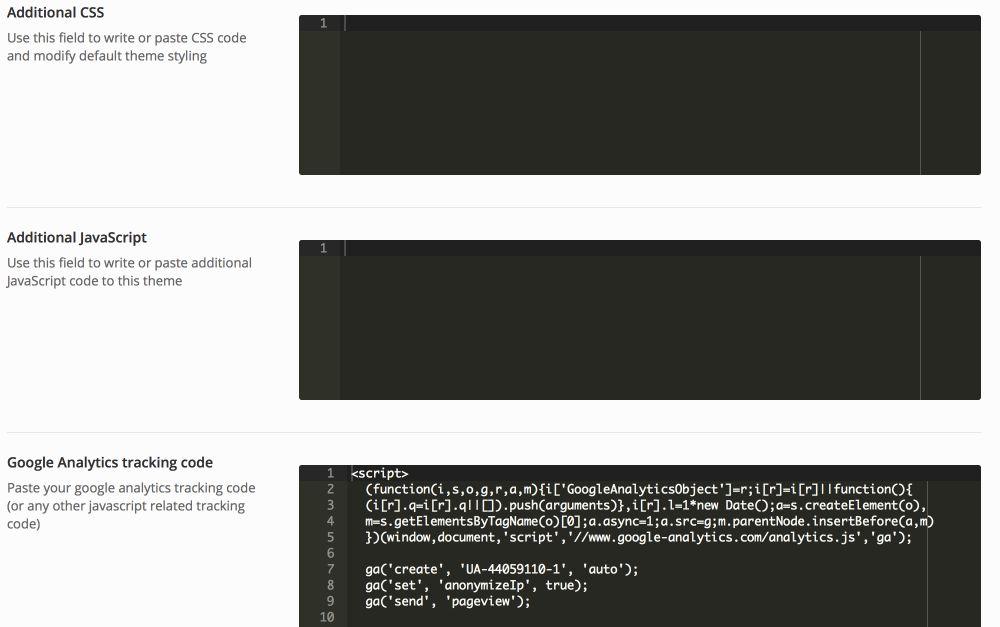Eingabe des Tracking Codes in den Theme Optionen