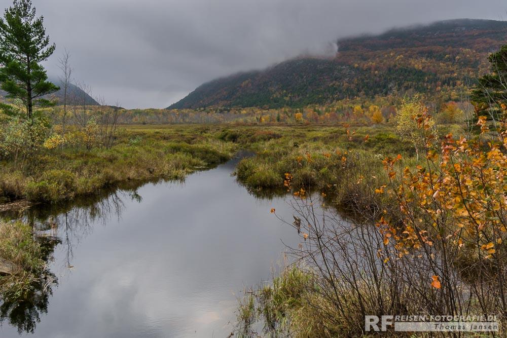 Flüßchen im Acadia
