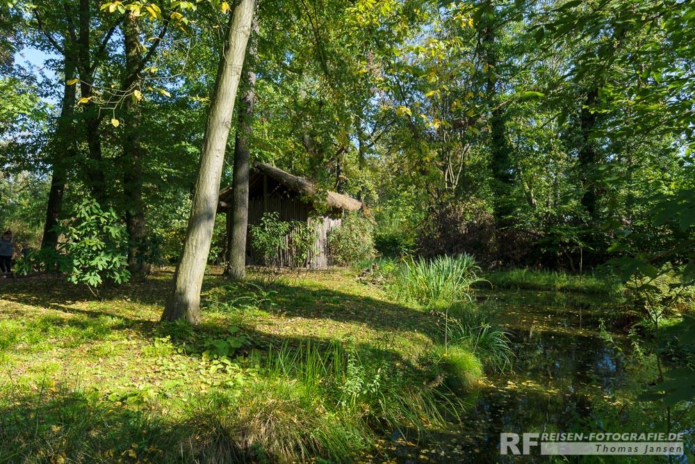 Regenwald in Gelsenkirchen