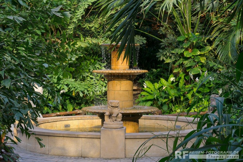 Springbrunnen im Tropenhaus