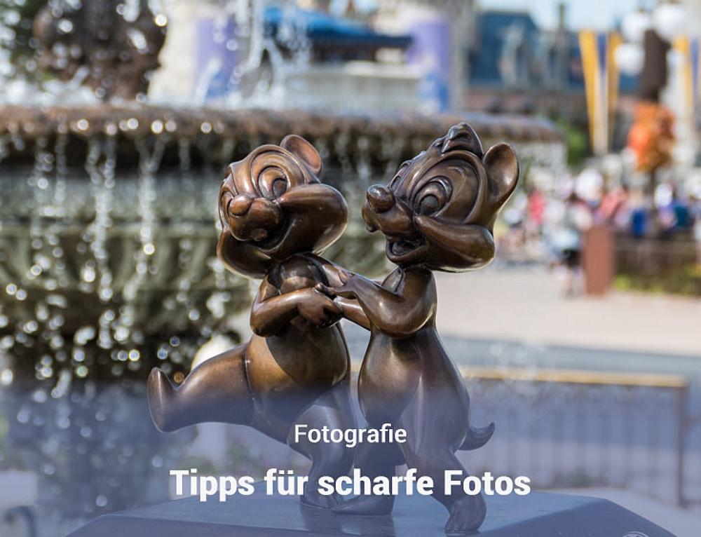Scharfe Fotos machen – Tipps
