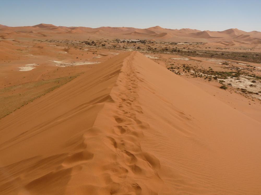 """""""Sossuvsvlei"""": Drei Schritte vor, zwei zurück – eine Wanderung auf die Dünen ist nichts für Schwächlinge."""