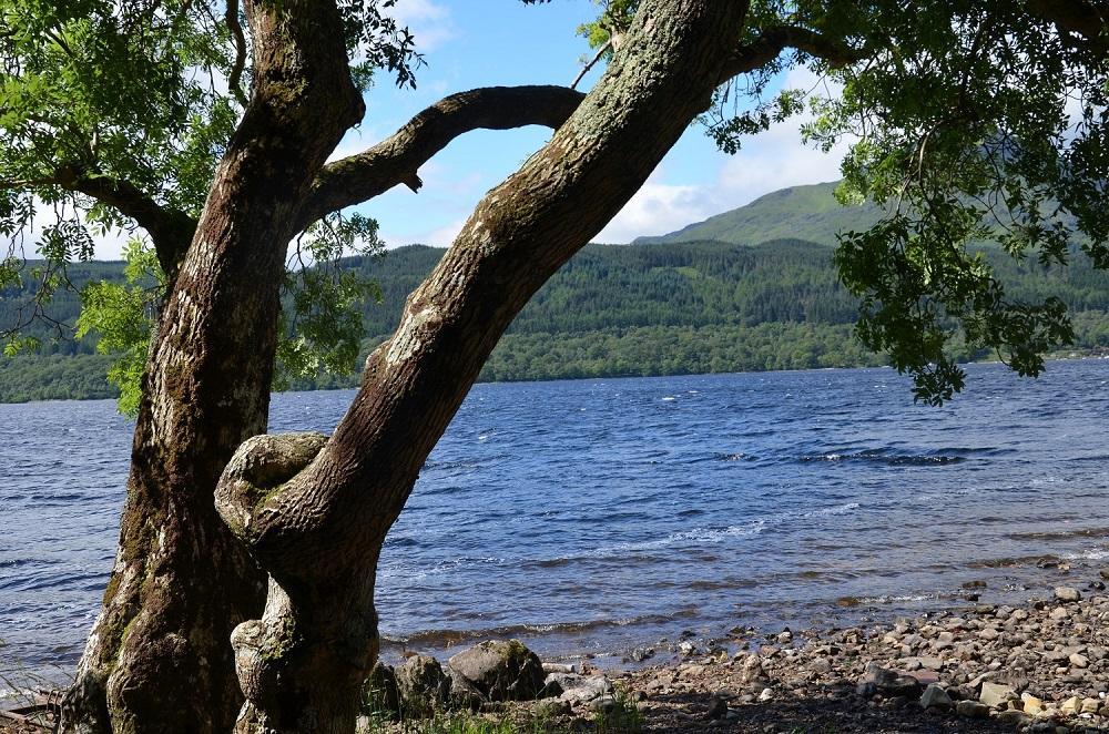 Loch-Lomond (©entdecker-greise.de)