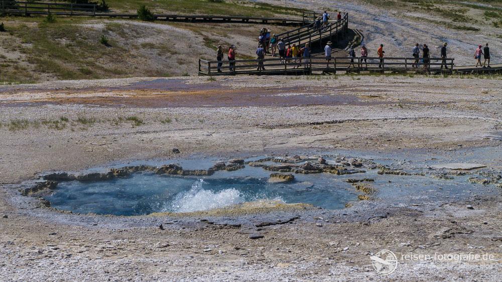 Plume Geysir