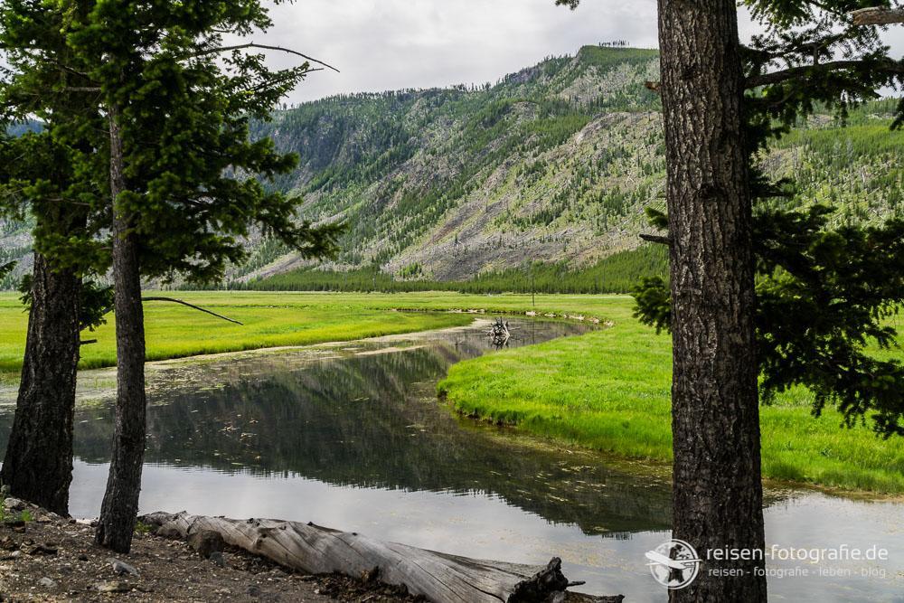 Firehole River im Westen des Parks