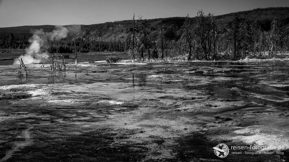 Irgendwie nicht von dieser Welt - im Yellowstone
