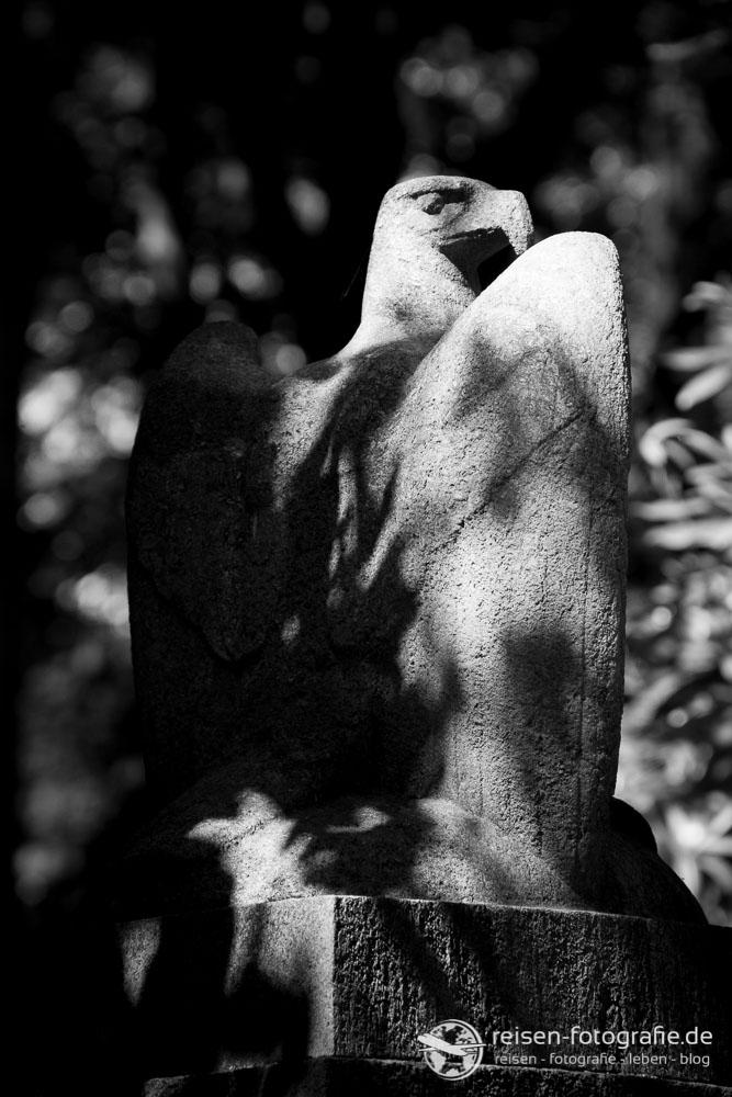 Adler auf dem Friedhof