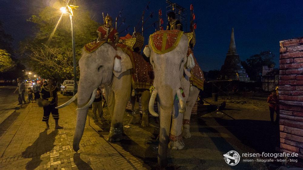 Die ersten Elefanten unserer Reise