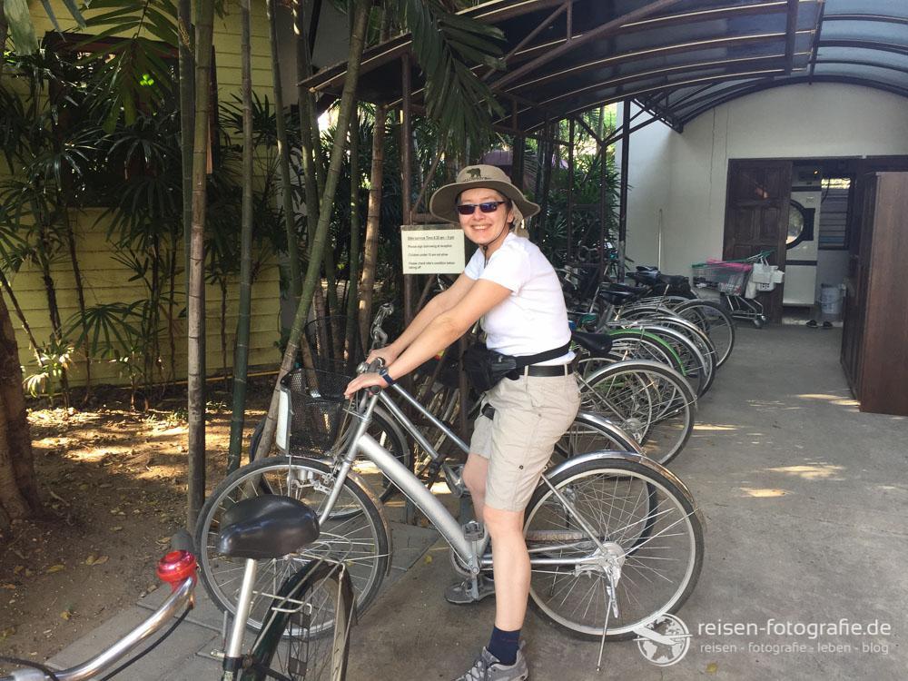 Mit den Fahrrad zum Supermarkt