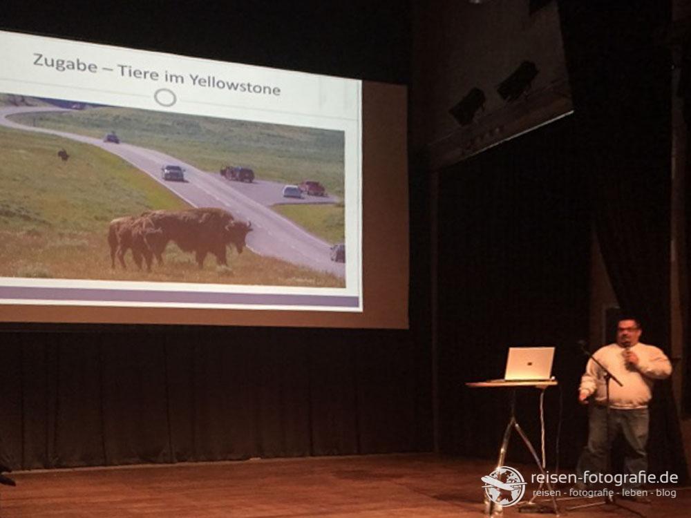 Zugabe: Tierbilder aus dem Yellowstone