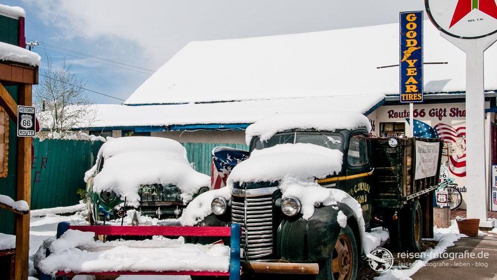 Seligman im Schnee - so Bilder sieht man auch nicht oft