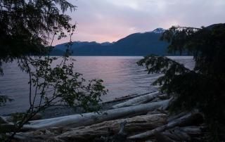 Sonnenuntergang 1 - mit Bäumen im Vordergrund