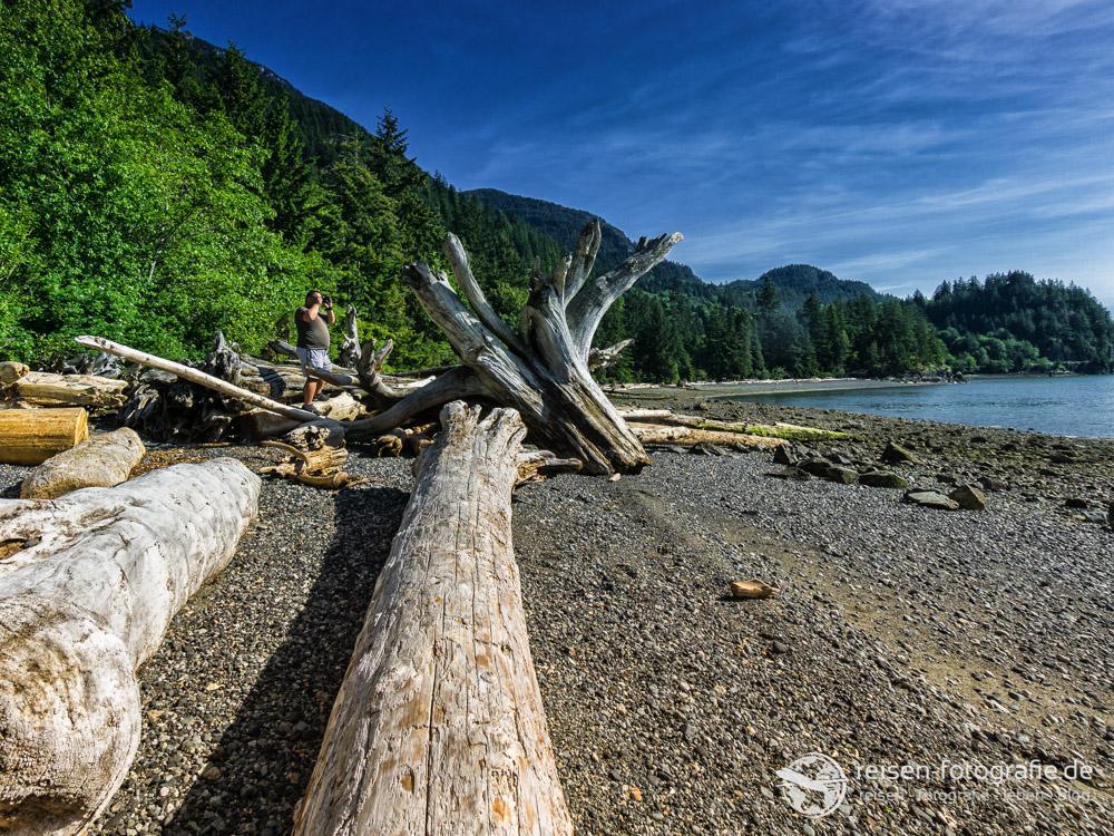 Porteau Cove Provincial Park: Treibholz am Fjord