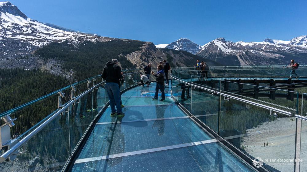 Auf dem Glacier Skywalk