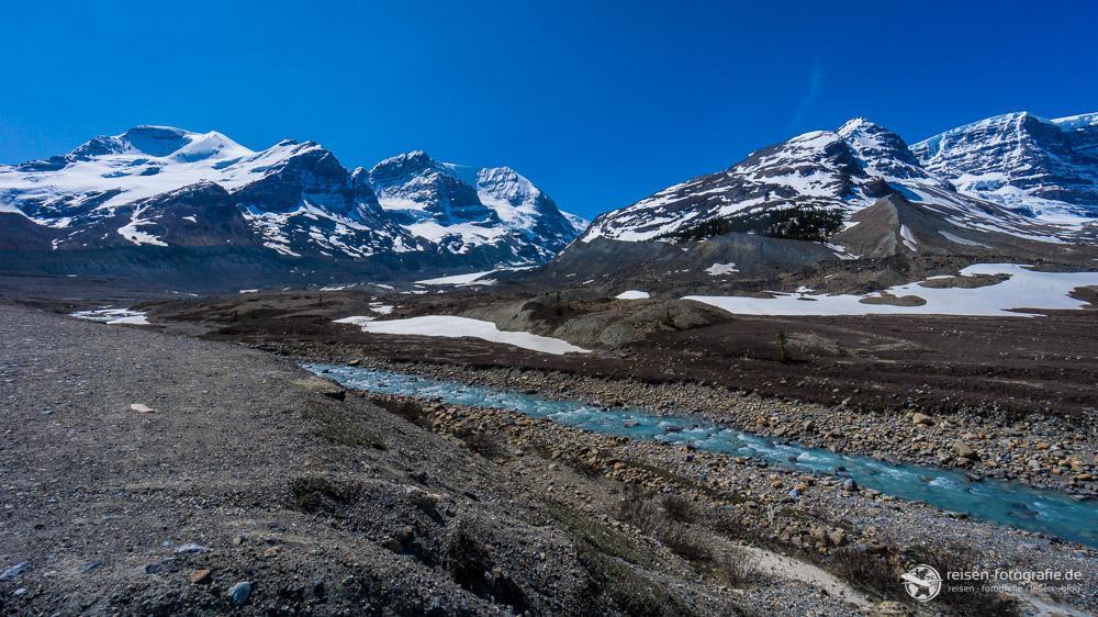 Blick über die Ebene vor dem Columbia Icefield