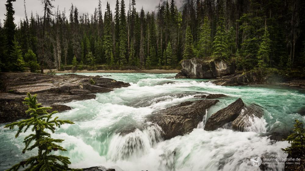 Zufluss zum Natural Bridge Wasserfall