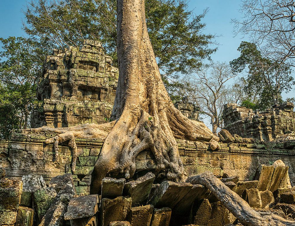 Archäologischer Park Angkor: Angkor Thom, Ta Prohm, Prasat Kravan