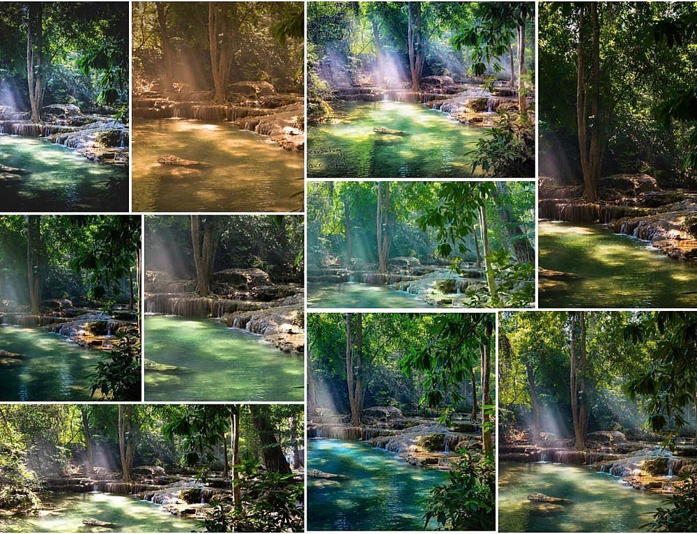 Fotobearbeitungs Challenge #4 – Regenwald – Zusammenfassung