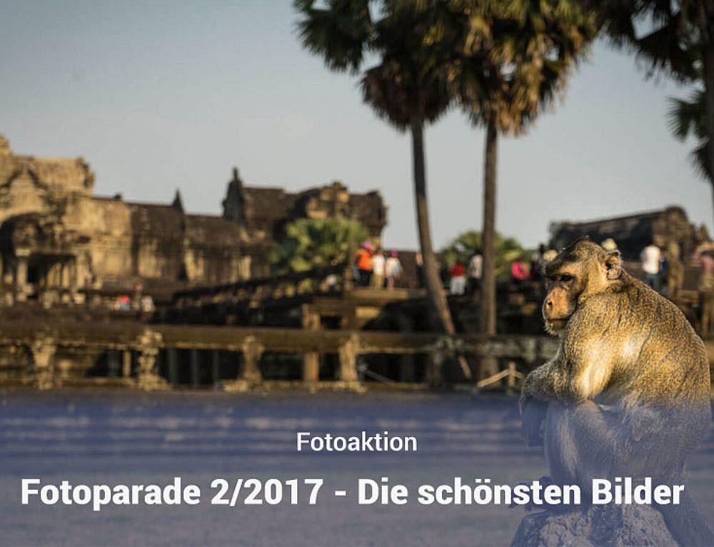 Fotoparade – Die schönsten Fotos aus dem 1. Halbjahr 2017