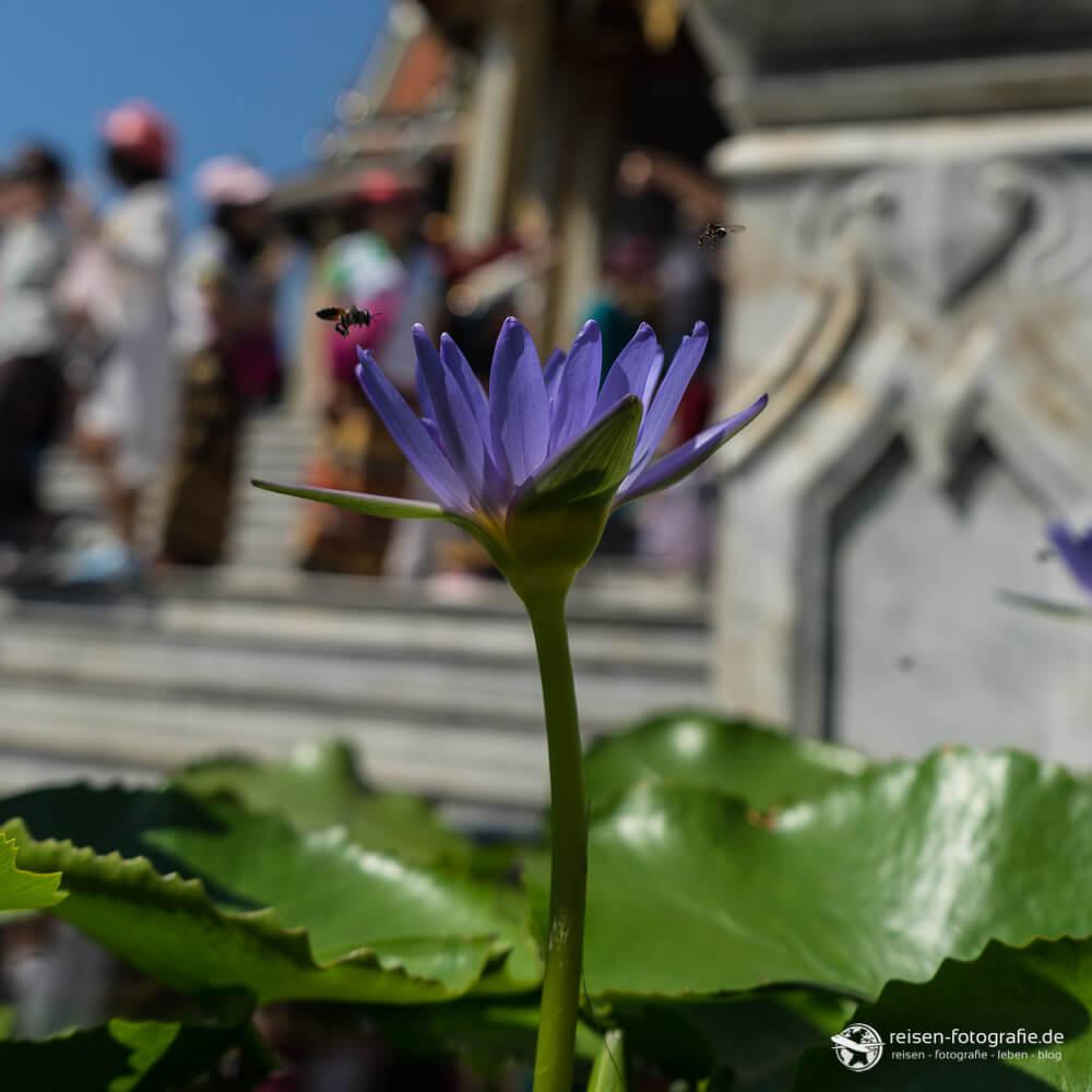 Details aus dem Wat Phra Kaeo Tempel