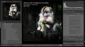 fotobearbeitung-praxis