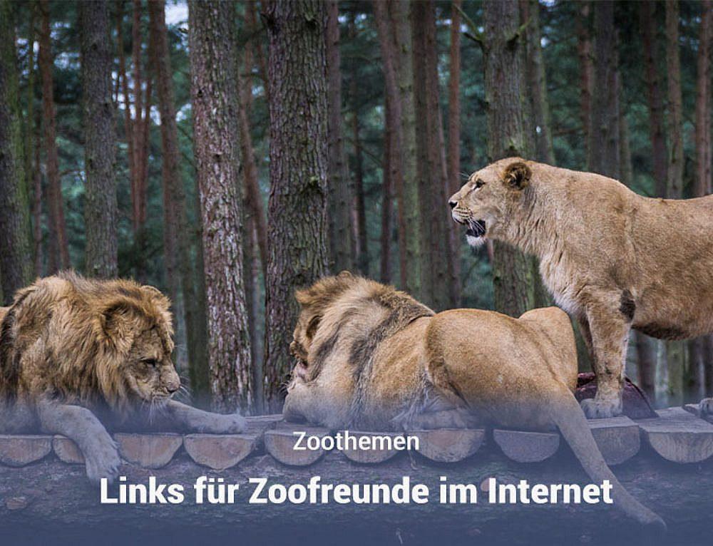 Links für Zoofreunde