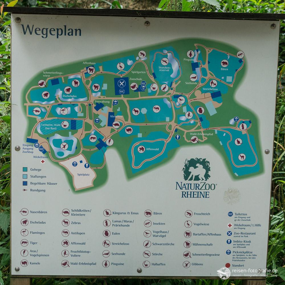 Wegeplan Naturzoo Rheine