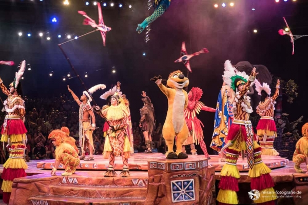 Show in Animal Kingdom