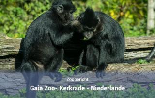 GaiaZoo Kerkrade