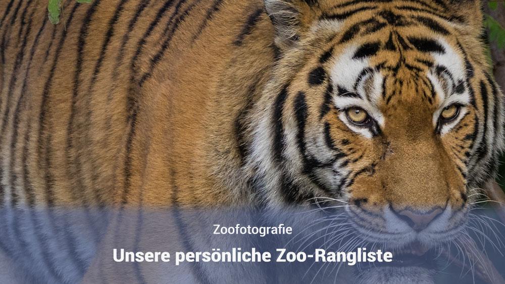 Unsere Zoorangliste