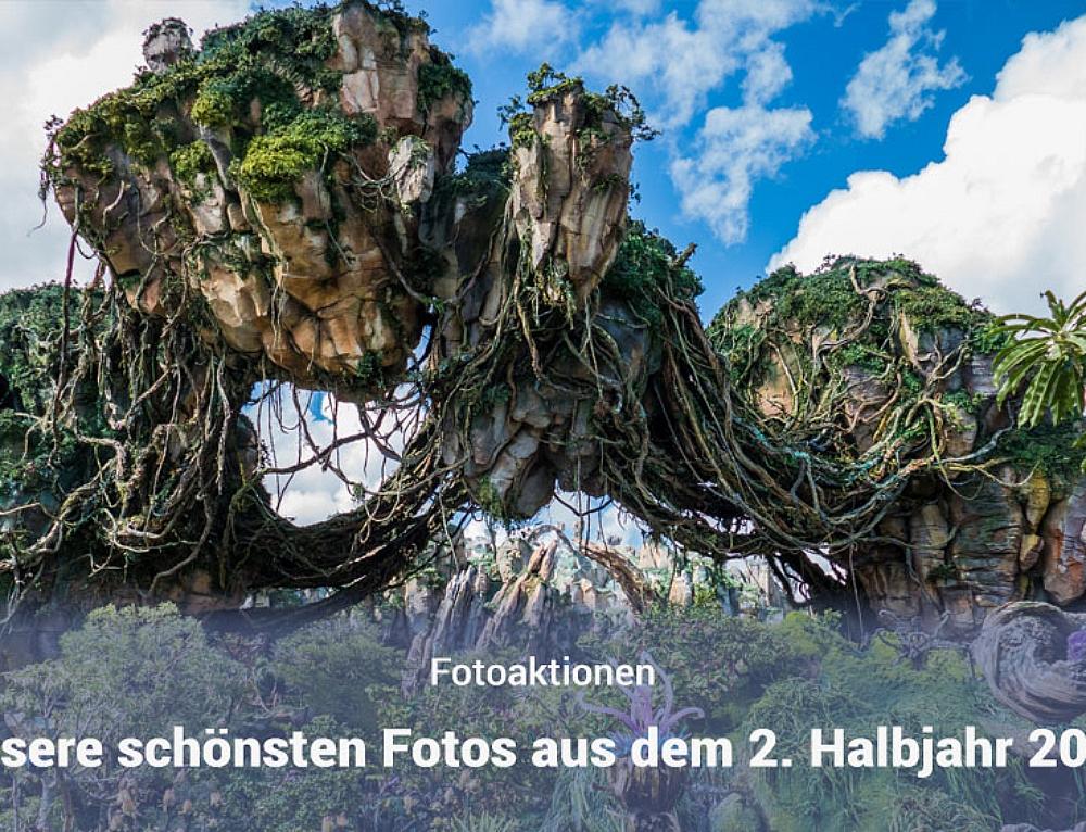 Fotoparade – Die schönsten Fotos aus dem 2. Halbjahr 2017