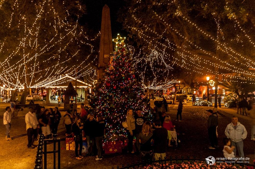 St. Augustine - Plaza de la Constitución Weihnachtsbaum