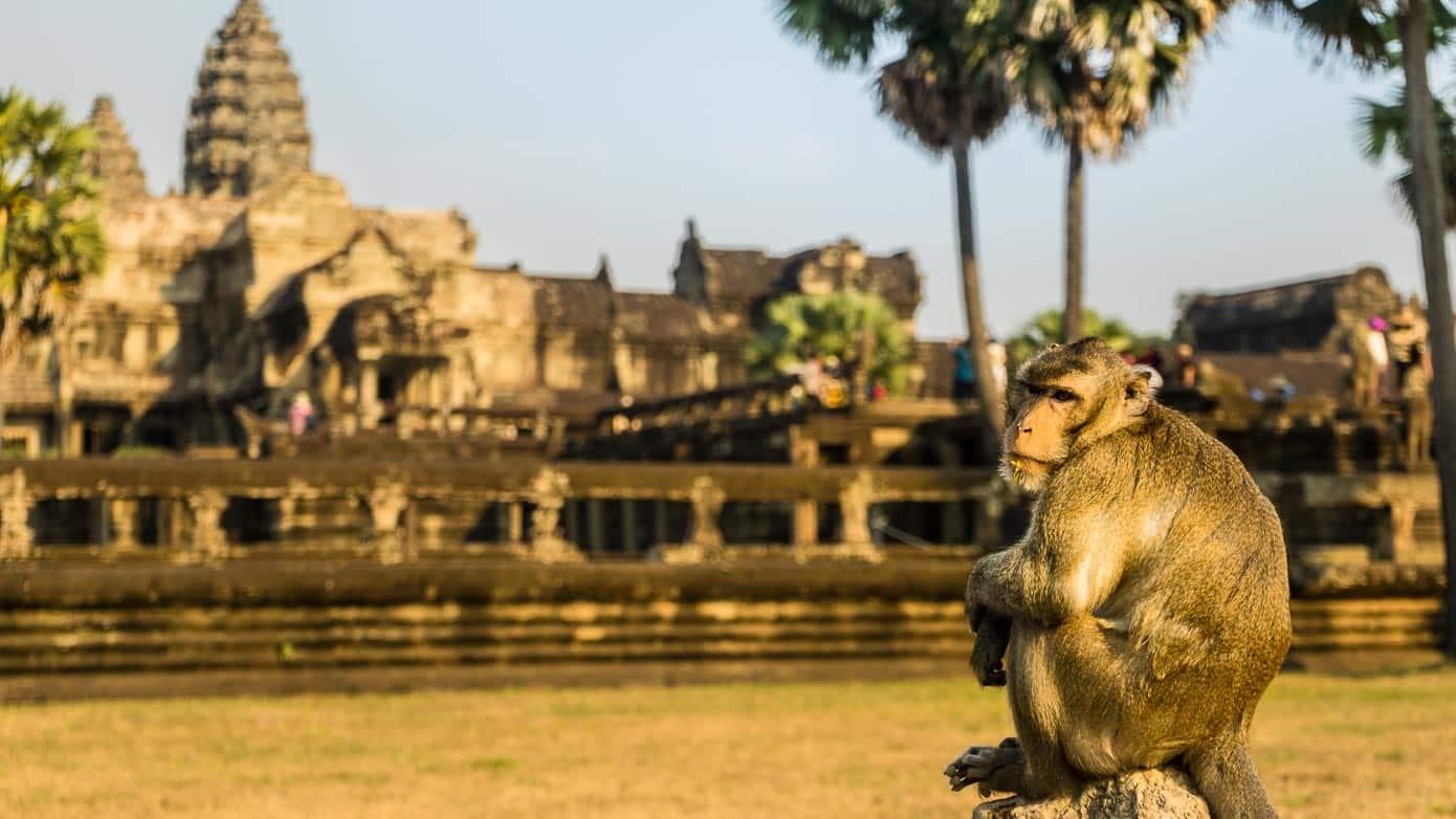 Angkor Wat Slider