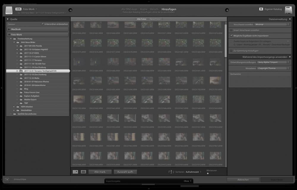 Fotos fürs Web optimieren - Import Lightroom