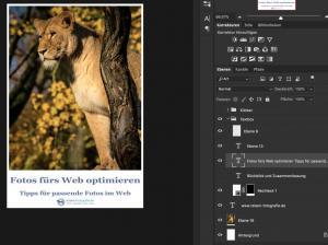 fotos fürs web optimieren 11 export pinterest