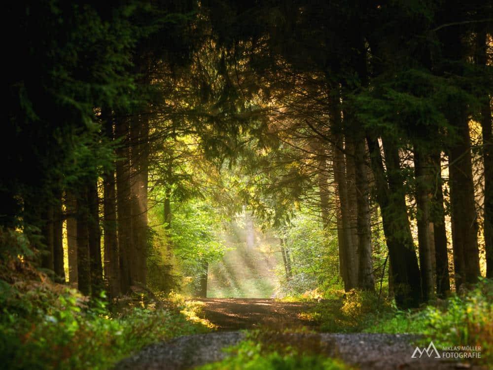 Niklas Möller Landschaftsfotografie 0001