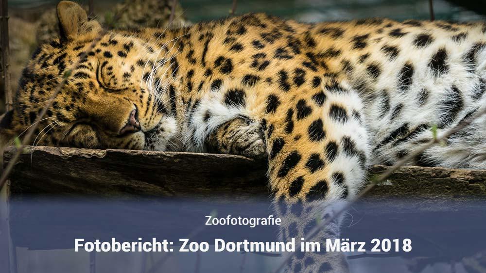 Zoo Dorrtmund im März 2018