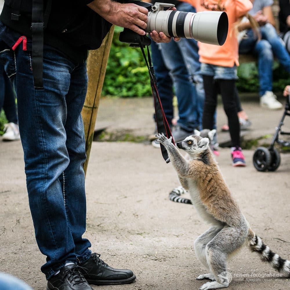 Spaß beim Fotografieren