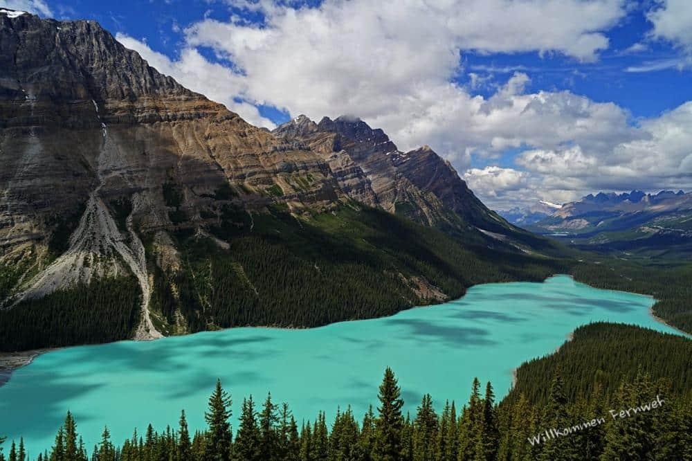 Willkommen-Fernweh-KAN-Banff-Peyto-Lake_wr