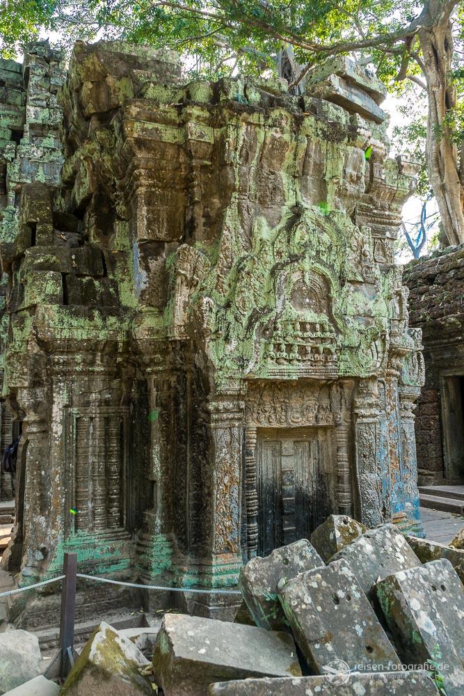 Ta Prom Tempel in Kambodscha