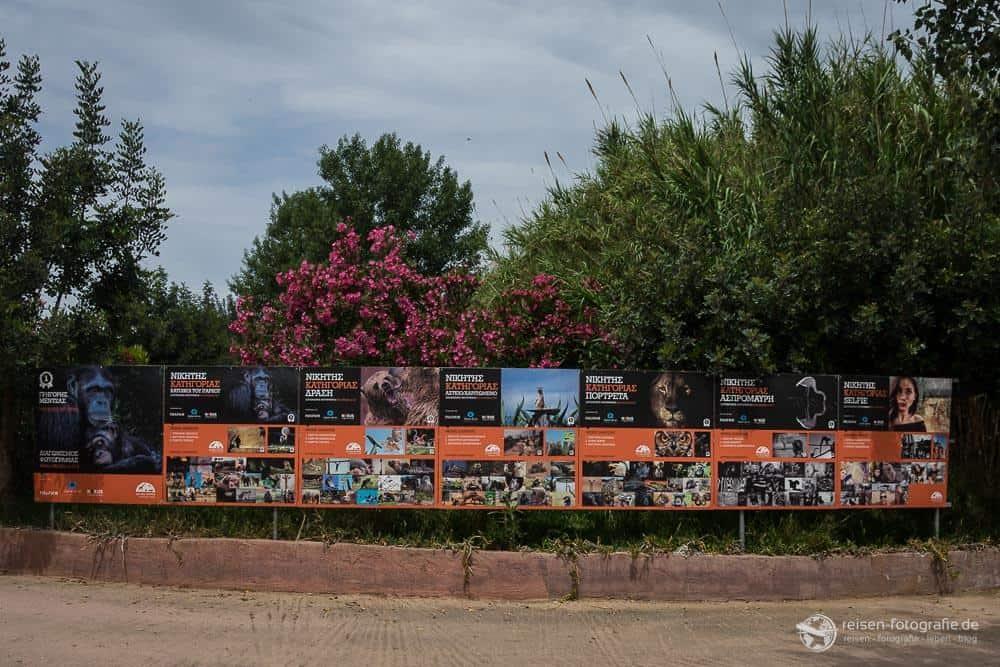 Willkommen im Attika Zoological Park
