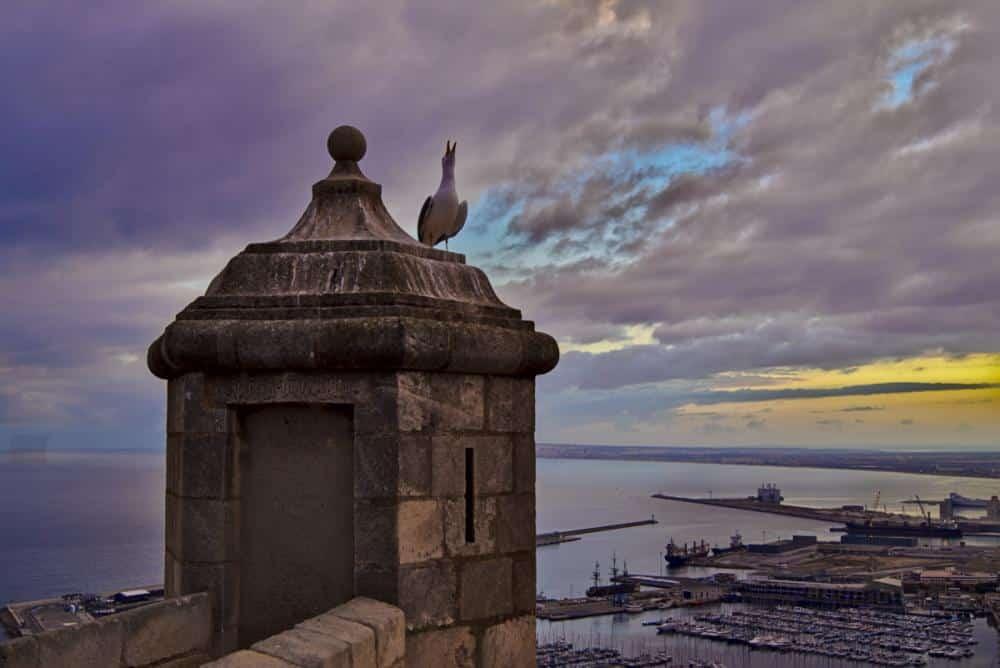 Alicante von Nico Oettel