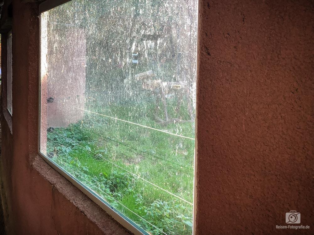 Fenster an einem Gehege
