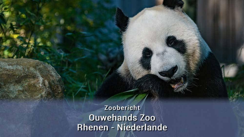 Ouwehands Zoo Rhenen - Niederlande