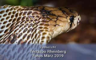 Terra Zoo im März