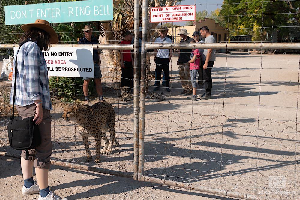 Eingang zur Geparden Farm