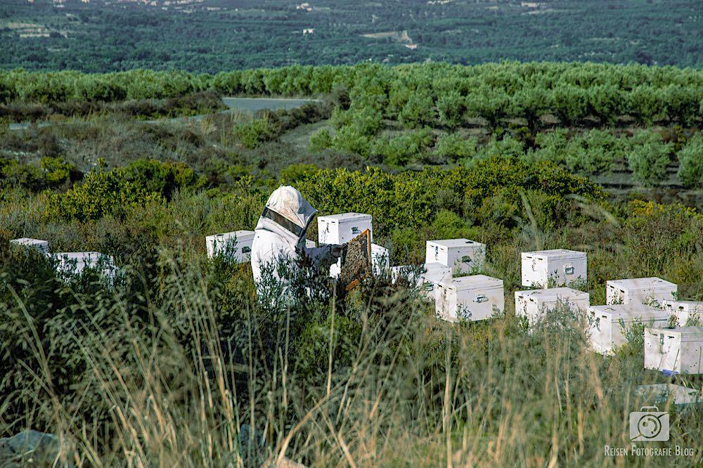 Imker bei der Arbeit auf Kreta